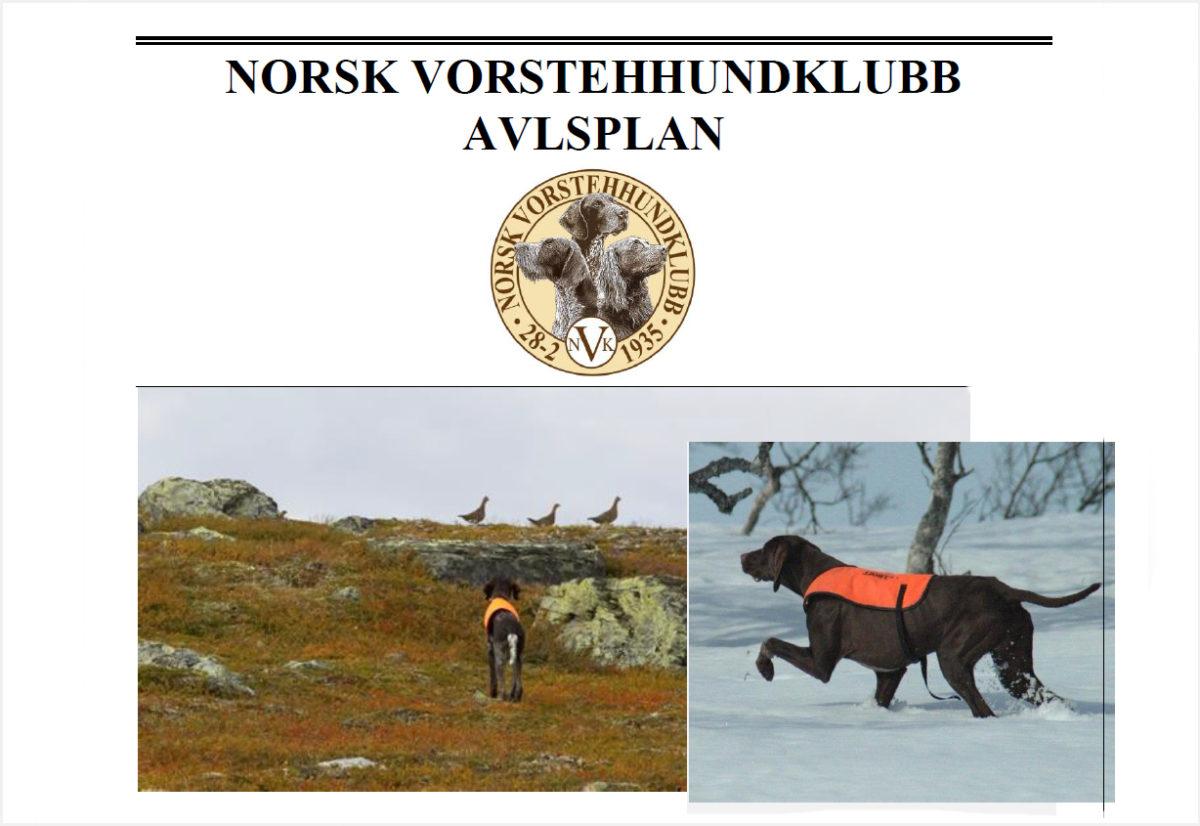 Ny avlsplan for NVK