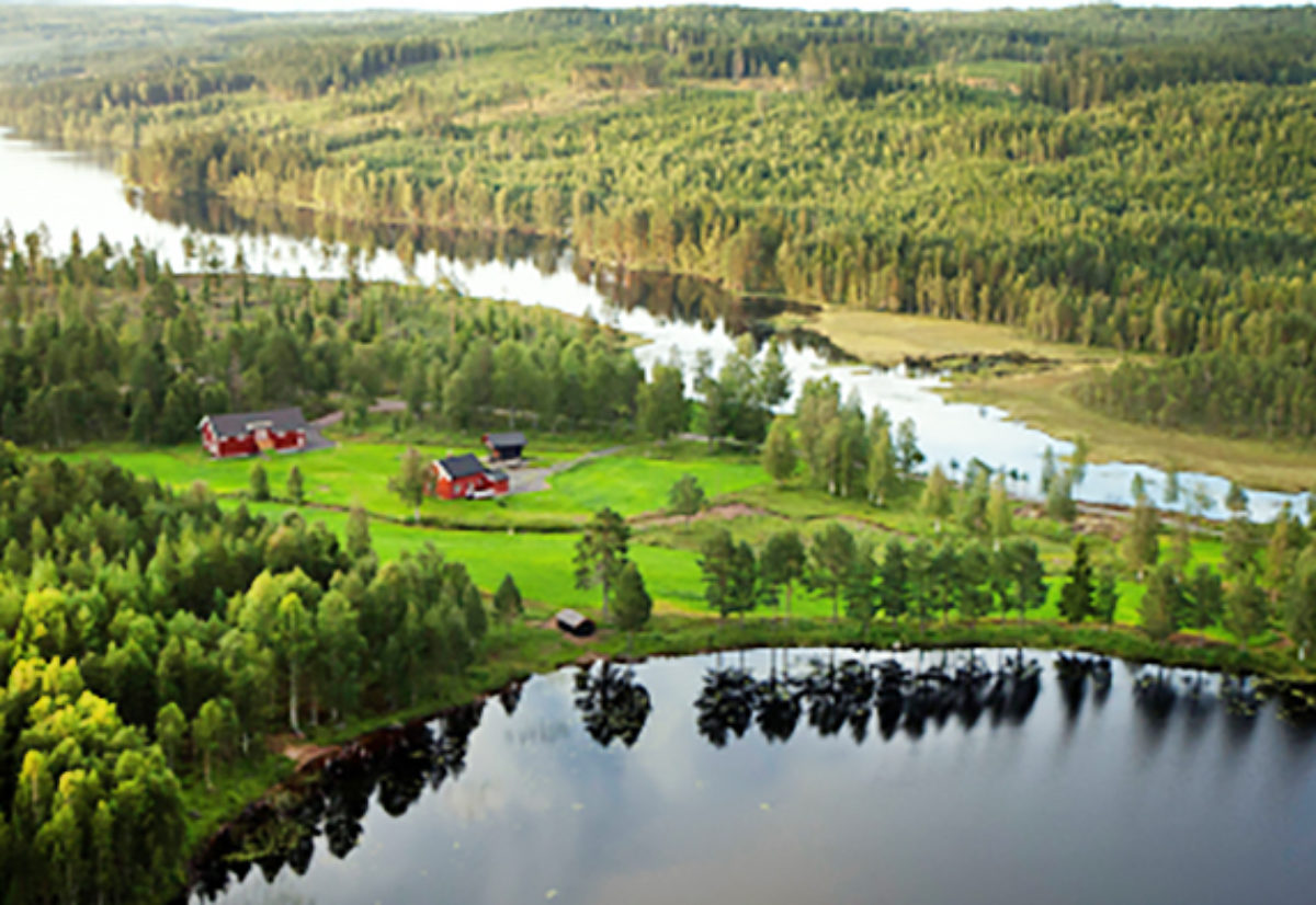 Skogsfuglprøven og fullkombinertprøven i Stangeskovene 5. til 7. september avlyses
