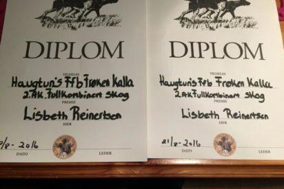 Fullkombinert-diplomer til Frøken Kalla