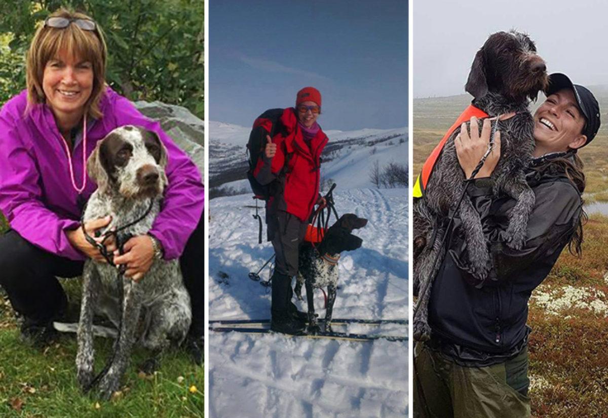 Årets hunder 2016