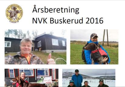 Årsberetning forside Buskerud 2016
