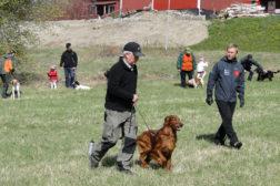 På kurs med Hundskolan Vision. Foto: Hundskolan Vision