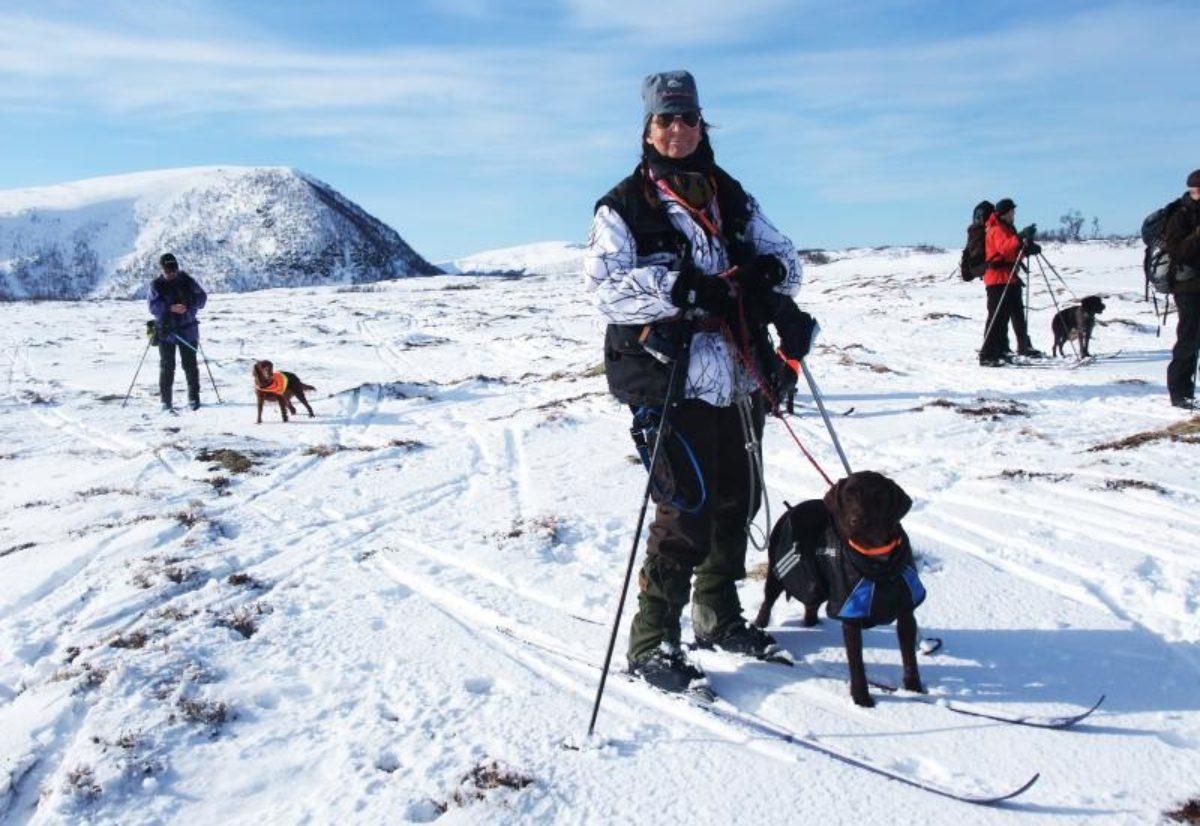 Årets vinterhund i Oslo/Akershus NVK