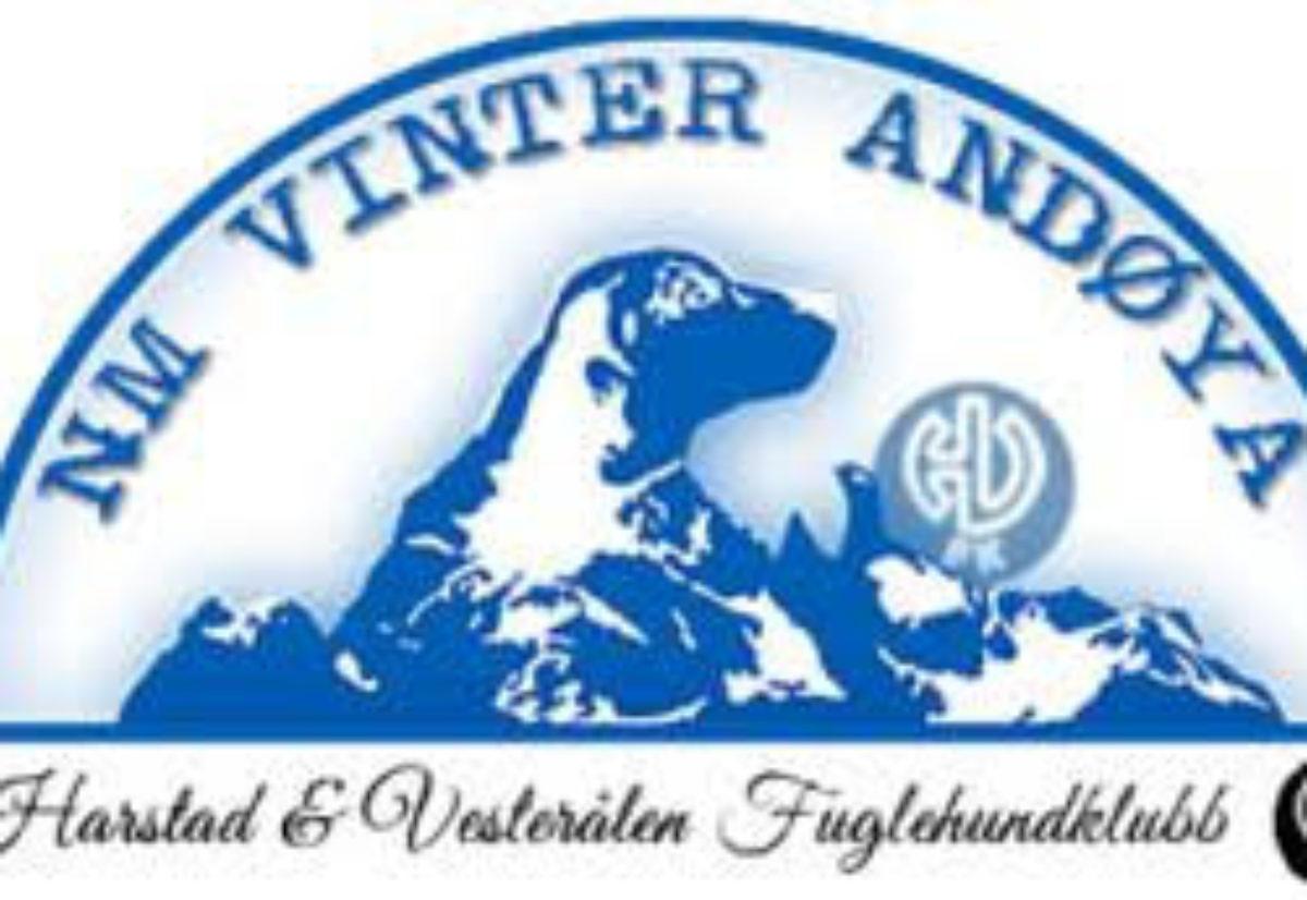 Laguttak NM lag vinter 2017
