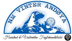 Logo NM vinter Andøya