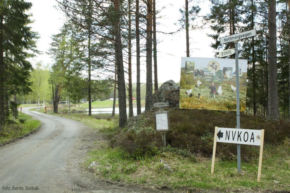 Veien blir skiltet fra Årnes. Buhol landssamnling 2015