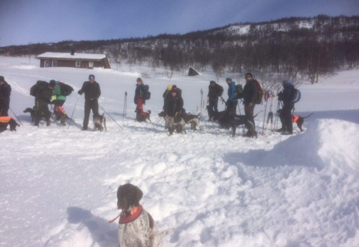 Snø og sol på vintersamling på Bjåen