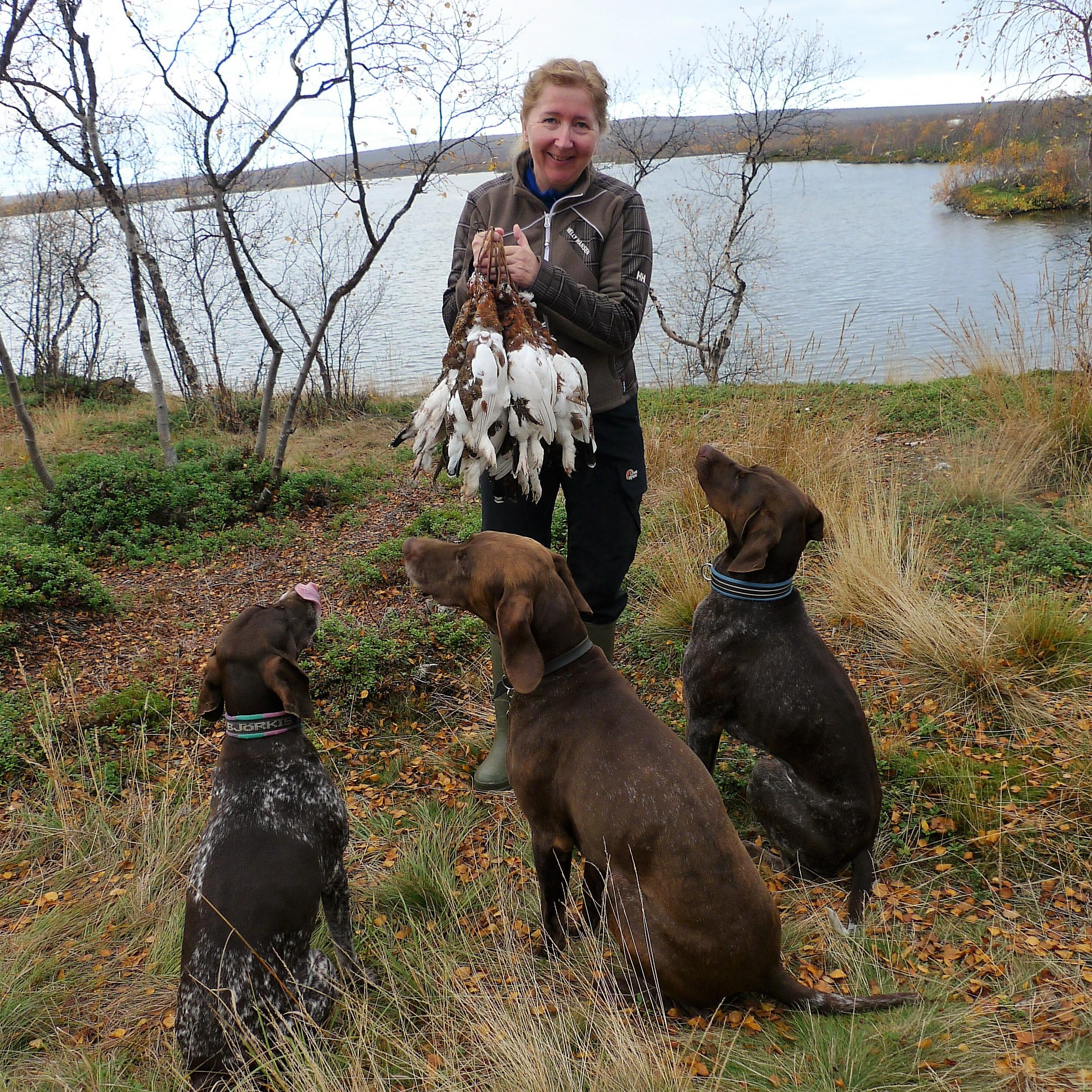 Karina Kolflaath med tre vorstehhunder og ryper