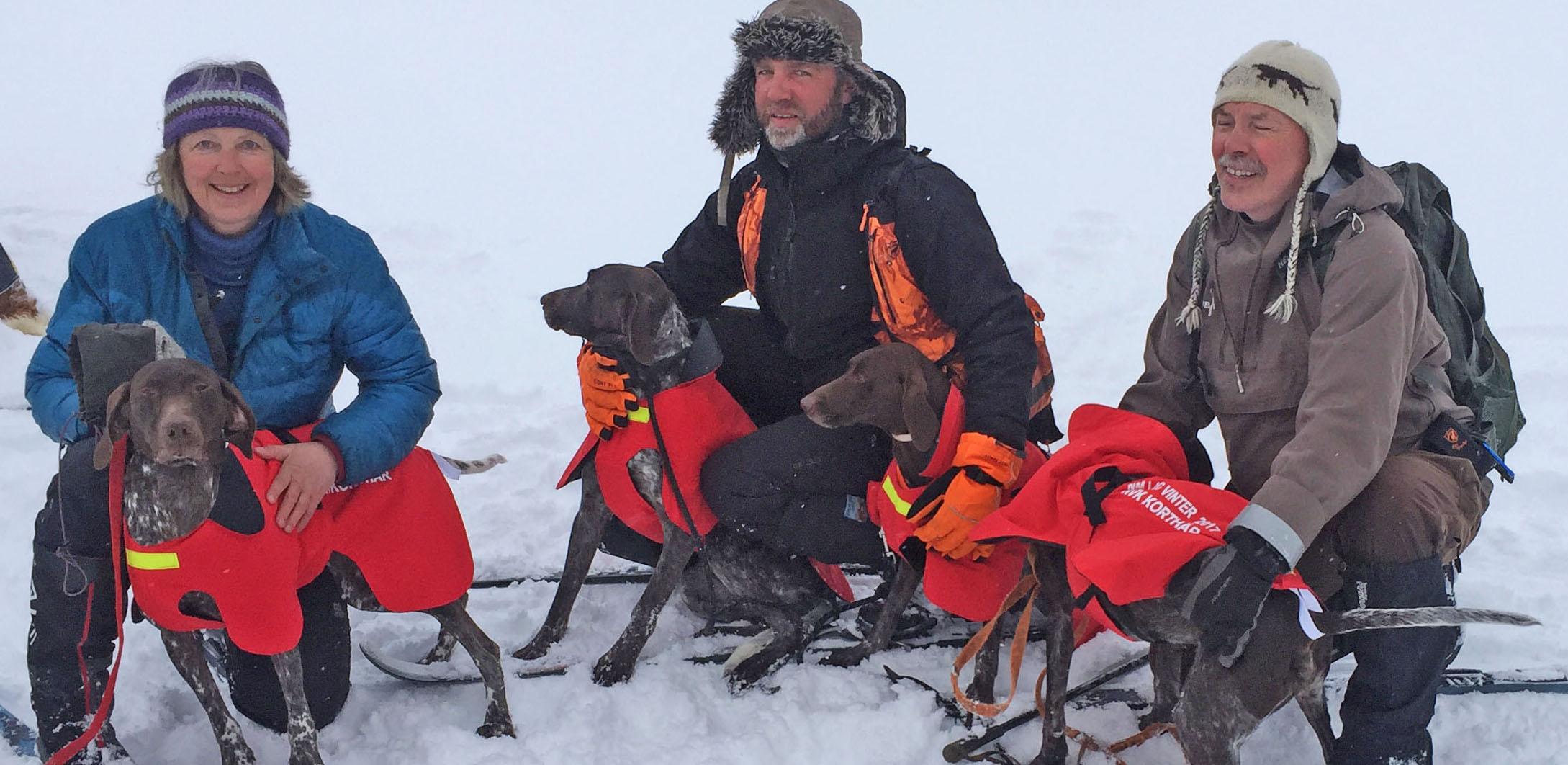KV laget NM-gull vinter 2017: Anne Maj Krogh/Itza's Heidi, Robert Brenden/Tiurjegernes Solo av Sognexpressen og Ulf Antonsen/Rypesteggens Ravna,