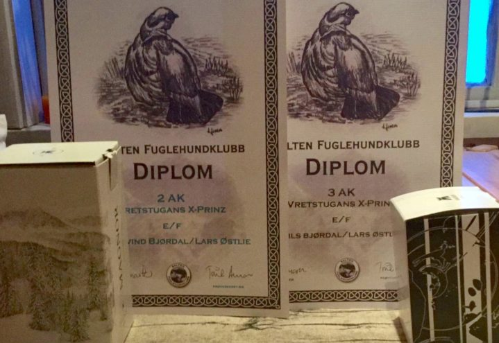 Diplom og premier på Saltfjellprøven til Vretstugans X-prinz