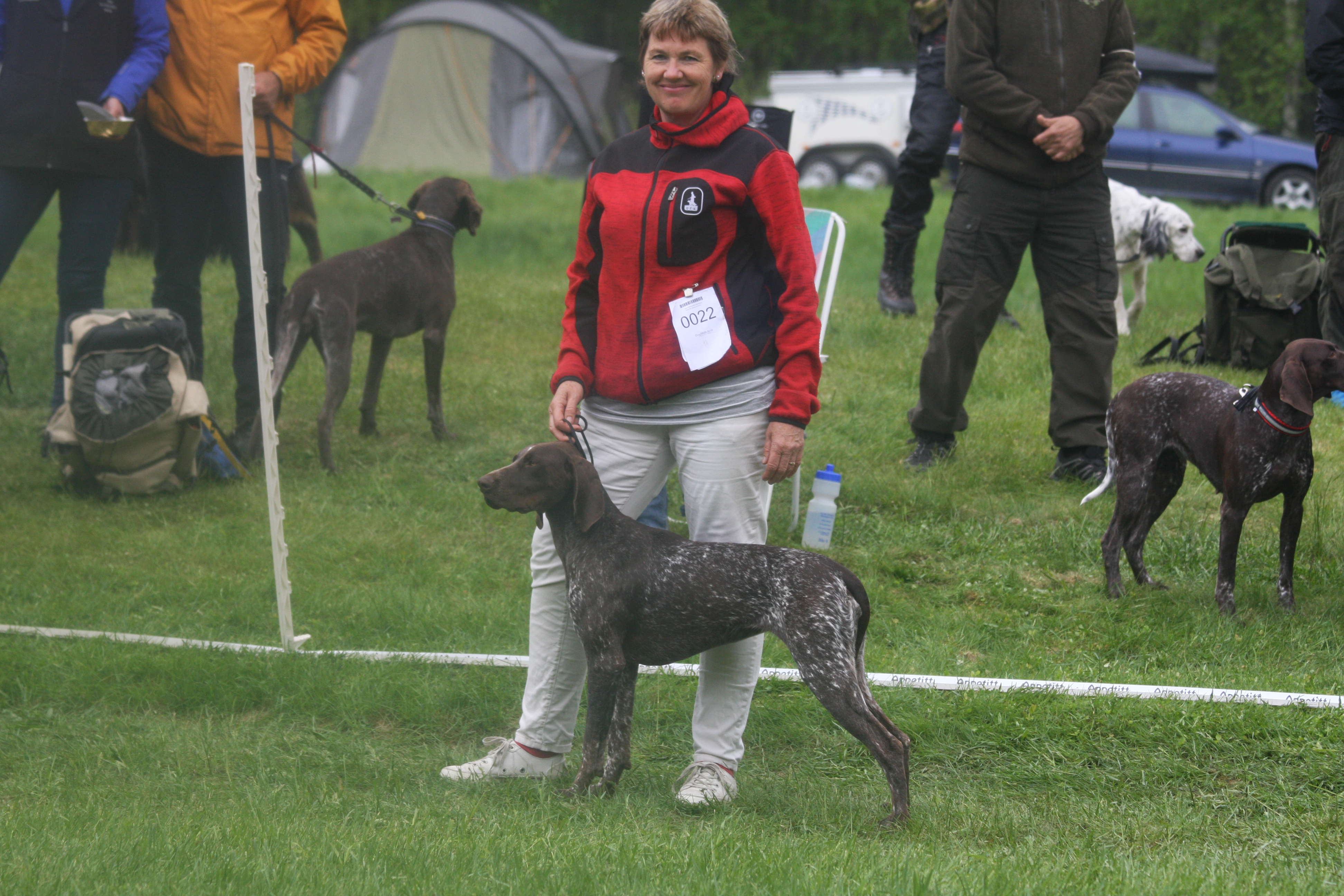 Anne Grete Langeland