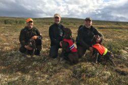 Jaktpremierte vorstehhunder i uke 35