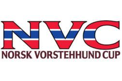 NVC nettsiden ligger nede [Problemet løst]