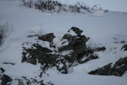 Vintersamling på Saltfjellet 2.-4. mars