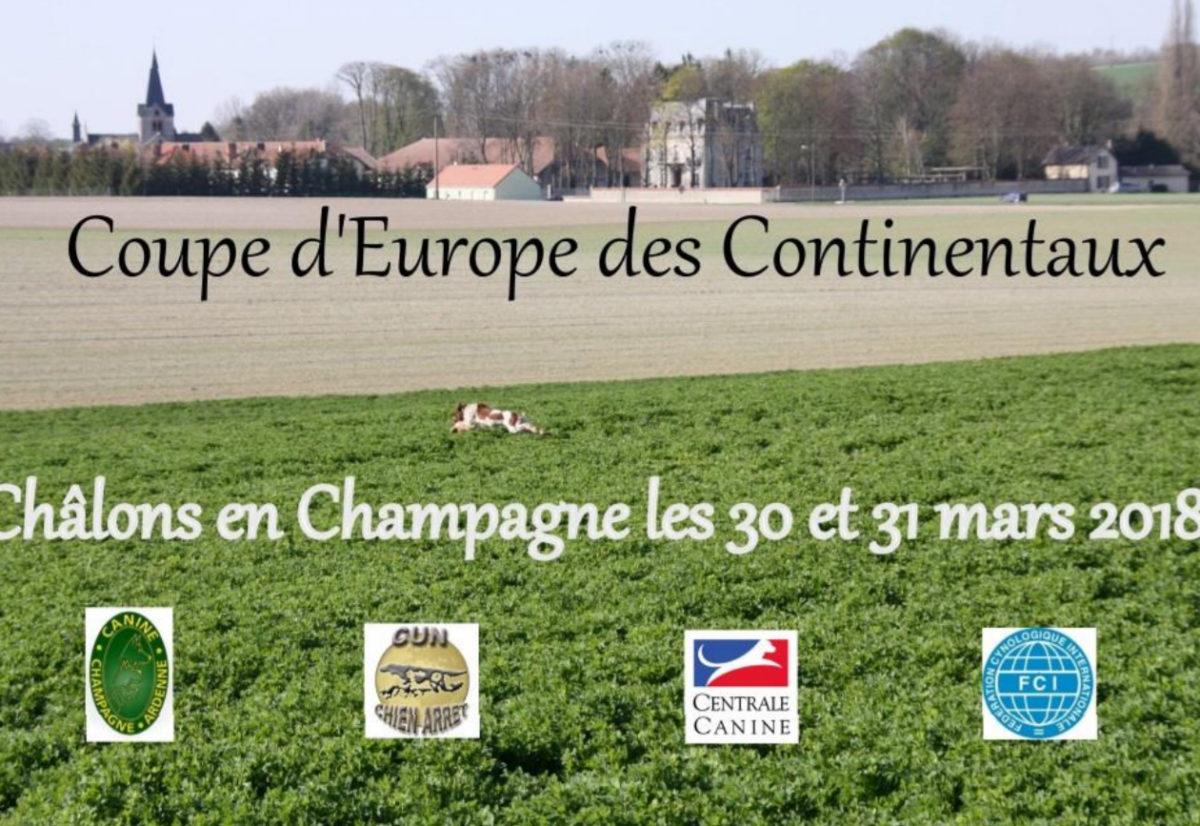 EM og VM i Frankrike for kontinentale fuglehunder