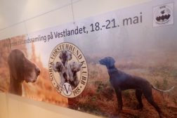 Landssamling 2018 i Hordaland