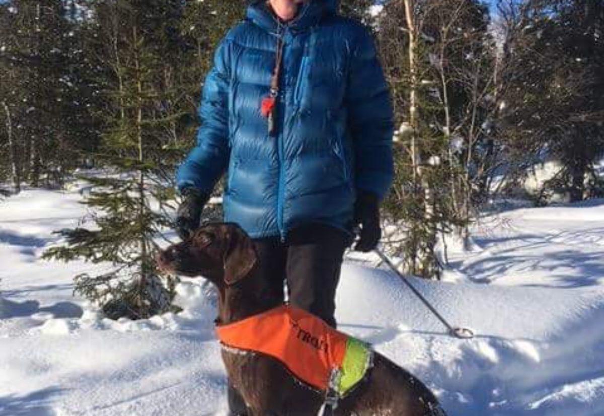 Premierte nordlandshunder fra vinterens første prøvehelger.