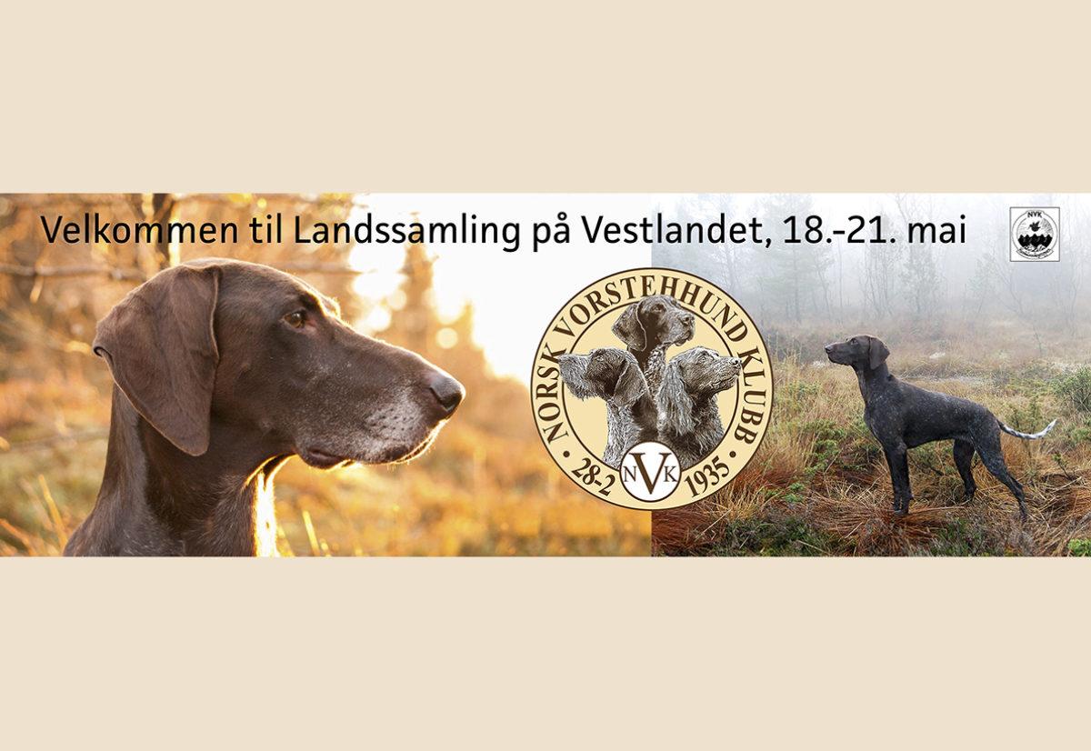 Velkommen til Landssamlinga 2018