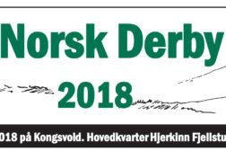 32 vorstehhunder påmeldt Norsk Derby