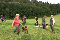 Ny på jaktprøve-kurs