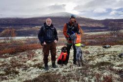 Følg NM-finalen direkte her – to vorstehhunder er med