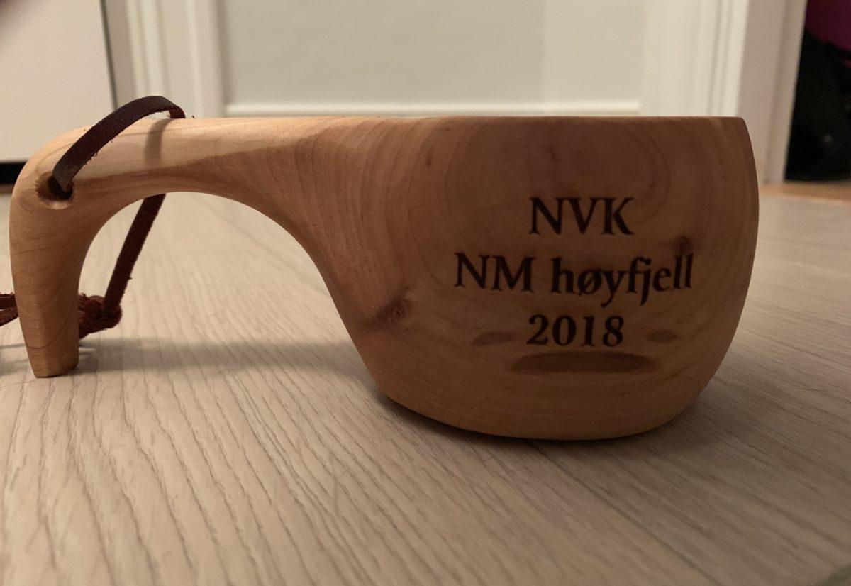 Uttak NM lag høyfjell 2019