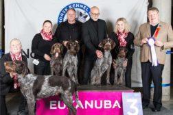 Gode resultater for hunder i NVK Østfold på årets Dogs4All