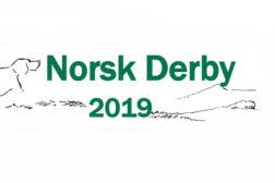 Norsk Derby 2019