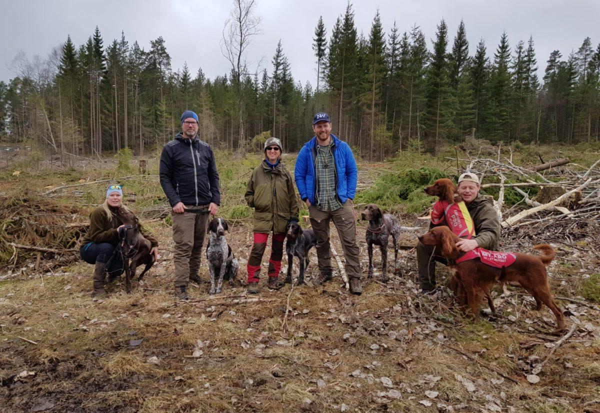Samling på skogen i regi av NVK Østfold