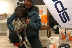 Årets vinterhunder i NVC 2019