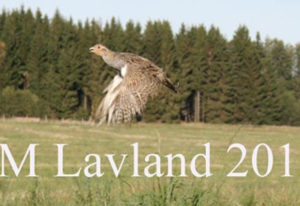 5 vorstehere til semi i NM lavland