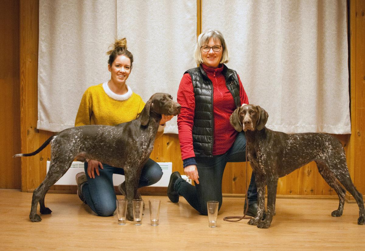 Årets hunder Hordaland 2020