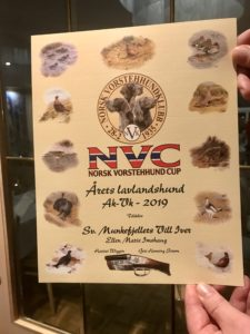 NVC-diplom Årets lavlandshund 2019 Munkefjellets Vill Iver