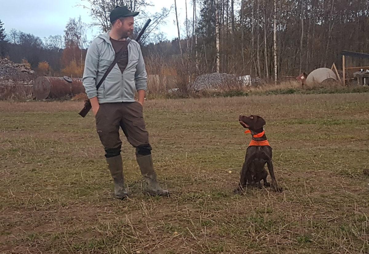 Dressurkurs for fuglehunden