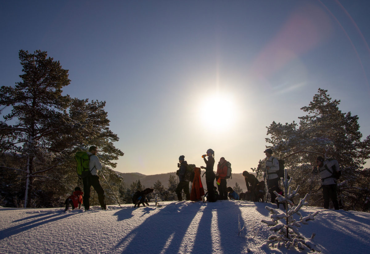Vintersamling i Trøndelag 2021