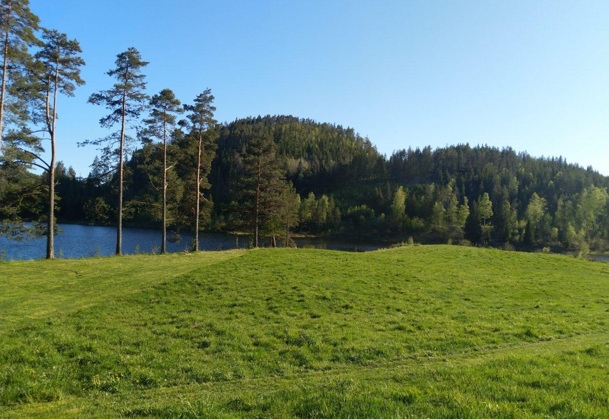 Trening 8. juni på Foss i Bjelland