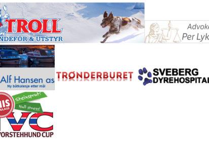 NVK søker nye sponsorer